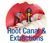 Root Canals & Extractions